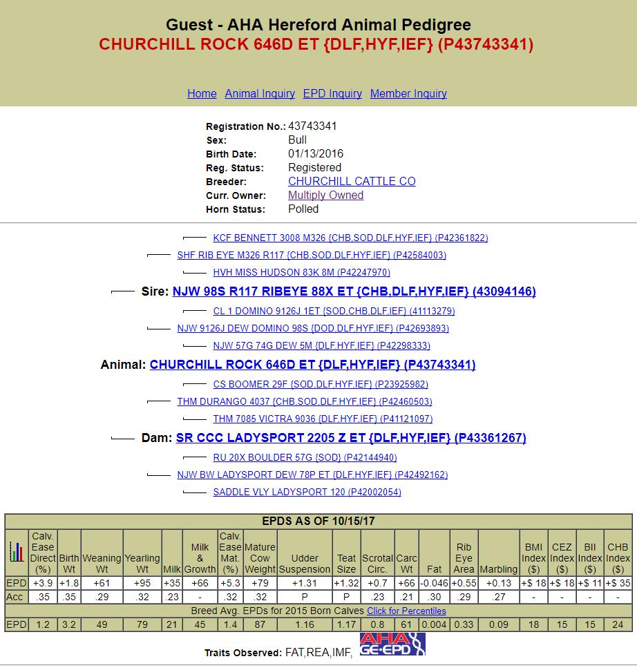 CHURCHILL ROCK 646D ET
